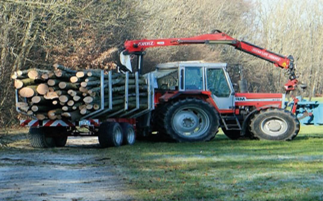 Niektóre prace z zakresu gospodarki leśnej – tematyczna lista kontrolna